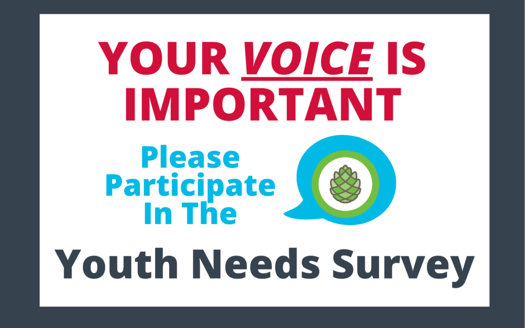 Are You 12-19 Years Old? Help YAC Make Grant Decisions